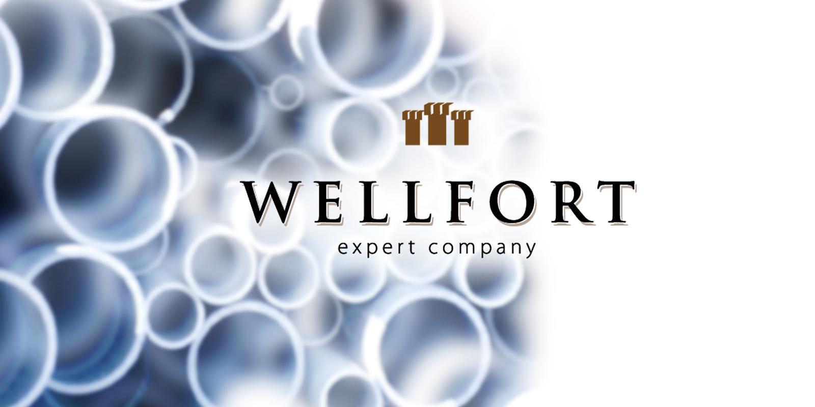 Компания «Wellfort»;;;;;;Разработка имени и слогана;;;;;;<span>Клиент:</span> Компания «Wellfort»;;;;;;;;;;;;Разработка имени и слогана;;;;;; 8 ;;;;;;
