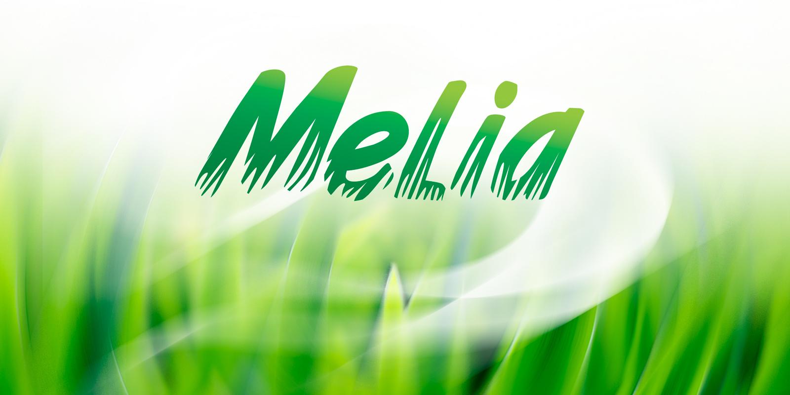 TM Melia;;;;;;Разработка логотипа (влажные салфетки);;;;;;<span>Клиент:</span> Дистрибьюторская компания «Мармонт»;;;;;;;;;;;;Разработка логотипа (влажные салфетки);;;;;;1